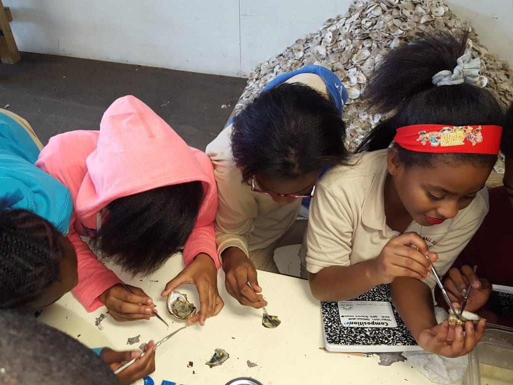 Students from Mott Hall IV in Bedford–Stuyvesant, Brooklyn, dissect oysters as part of The River Project, a marine science education and research facility located on the Manhattan shoreline of the Hudson River.